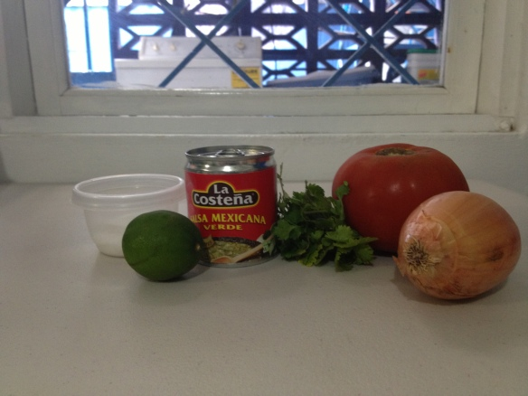 Pico de Gallo ingredients and a cool view of our washer!