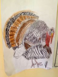 Turkey, in honor of recent holiday and Caden's granddad