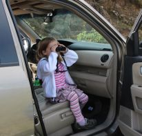 Checking out the view. Sarah prefers to stay in the car.