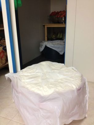 Day Two: Arrive and pull the resting dough out of the huge fridge.