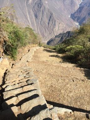 Walking down to view the llamas