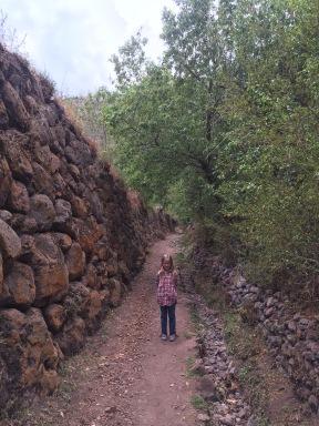 Incan terraces.